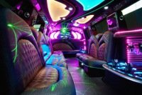 Photo of an 20 Passenger Limo